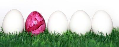 Huevo rosado Imagenes de archivo