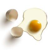 Huevo sin procesar agrietado Foto de archivo libre de regalías