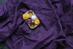 Huevo y flores del pollo en cartón Foto de archivo