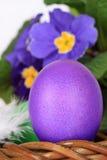 Huevo y flores púrpuras de Pascua Fotografía de archivo libre de regalías