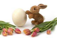 Huevo y tulipanes de Pascua con el conejo Fotografía de archivo libre de regalías