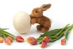 Huevo y tulipanes de Pascua con el conejo Imágenes de archivo libres de regalías