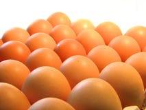 Huevos. Fotografía de archivo libre de regalías