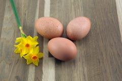 Huevos. Foto de archivo
