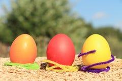 Huevos Imagenes de archivo