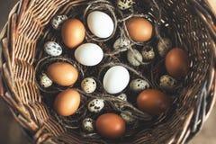 Huevos Fotos de archivo libres de regalías