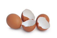 Huevos aislados fotos de archivo