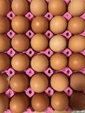 Huevos alineados en cartón del huevo imagen de archivo