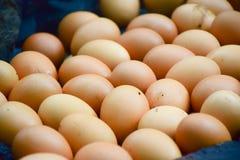 Huevos asados a la parrilla, mercado de la mañana en el país foto de archivo