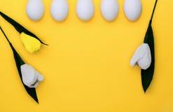 Huevos blancos de Pascua en fila y tulipanes de las flores en fondo amarillo Desde arriba, espacio de la copia, endecha plana fotografía de archivo