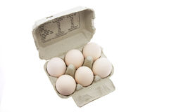Huevos blancos en el cartón del huevo Fotos de archivo libres de regalías