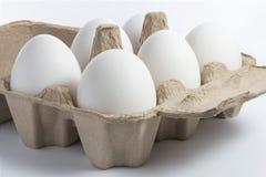 Huevos blancos en envase Fotos de archivo