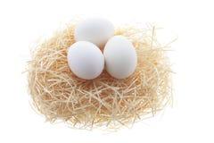 Huevos blancos en jerarquía de la paja Imagenes de archivo