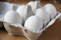 Huevos blancos en rectángulo Imagen de archivo libre de regalías