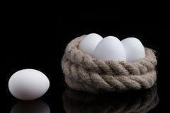 Huevos blancos en un fondo negro Foto de archivo