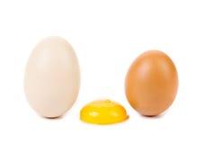Huevos blancos y marrones con la yema de huevo. Fotos de archivo libres de regalías