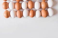 Huevos blancos y marrones en la forma de un rectángulo en un fondo blanco Imágenes de archivo libres de regalías