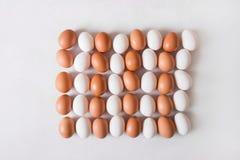 Huevos blancos y marrones en la forma de un rectángulo en un fondo blanco Fotografía de archivo libre de regalías