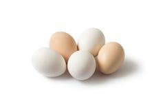 Huevos blancos y marrones en un fondo blanco Imágenes de archivo libres de regalías