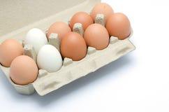 Huevos blancos y marrones en un paquete del cartón Imagenes de archivo