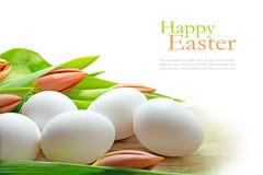 Huevos blancos y tulipanes anaranjados, fondo del coner para pascua Foto de archivo libre de regalías