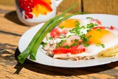 Huevos, cebollas verdes y tomates Fotografía de archivo