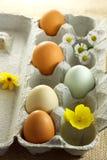 Huevos coloridos con las flores Imágenes de archivo libres de regalías