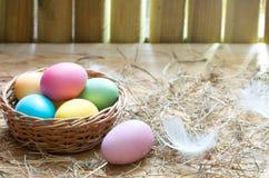 Huevos coloridos orgánicos de la decoración de Pascua en fondo del extracto de la primavera del gallinero de pollo imagen de archivo libre de regalías