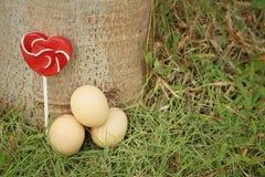 Huevos con el caramelo en una hierba verde Imagen de archivo libre de regalías