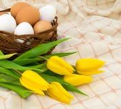 Huevos con el tulipán Fotos de archivo