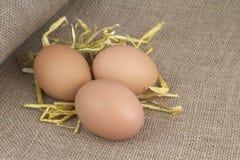 Huevos con la paja en la arpillera Foto de archivo libre de regalías