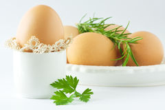 Huevos con perejil y romero Imagen de archivo libre de regalías