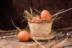 Huevos crudos en una jerarquía del heno Foto de archivo libre de regalías