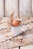 Huevos crudos en una jerarquía del heno Fotografía de archivo