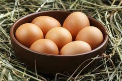 Huevos crudos en una placa Foto de archivo