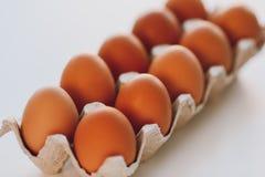 Huevos de Brown imagen de archivo libre de regalías