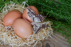 Huevos de Brown imagenes de archivo