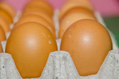 Huevos de Brown Fotografía de archivo libre de regalías