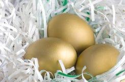 Huevos de Brown de oro Fotografía de archivo libre de regalías