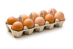Huevos de Brown en cartón de huevos fotografía de archivo