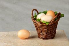 Huevos de Brown en cesta Fotos de archivo libres de regalías