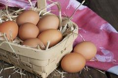 Huevos de Brown en cesta Imágenes de archivo libres de regalías