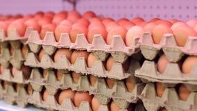 Huevos de Brown en envase de la cartulina Huevos en el conjunto Cáscara de huevo en el supermercado almacen de video