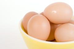 Huevos de Brown en tazón de fuente amarillo Imagen de archivo libre de regalías