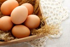 Huevos de Brown en tazón de fuente de madera Fotografía de archivo libre de regalías