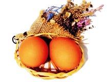 Huevos de Brown en un fondo blanco foto de archivo