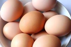 Huevos de Brown en un tazón de fuente Imagen de archivo libre de regalías