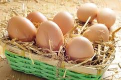 Huevos de Brown en una cesta Fotografía de archivo libre de regalías