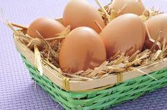 Huevos de Brown en una cesta Imagen de archivo