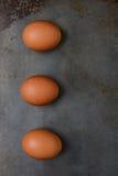 Huevos de Brwon en el molde para el horno Fotografía de archivo